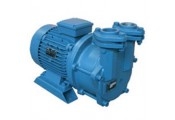 VPM Single Stage Monobloc Pump